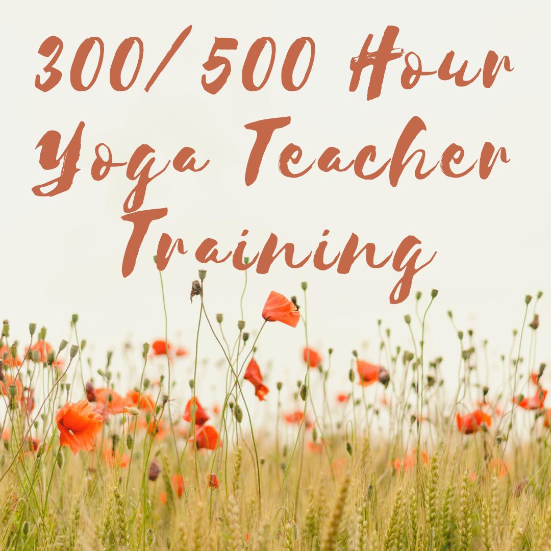 300 / 500 Hour Yoga Teacher Training (YTT)